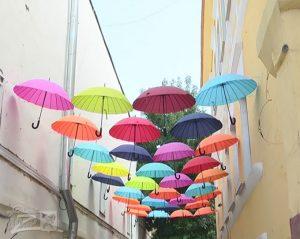 зонт_0001_Слой 3